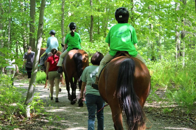 Line of horses and riders on the trail